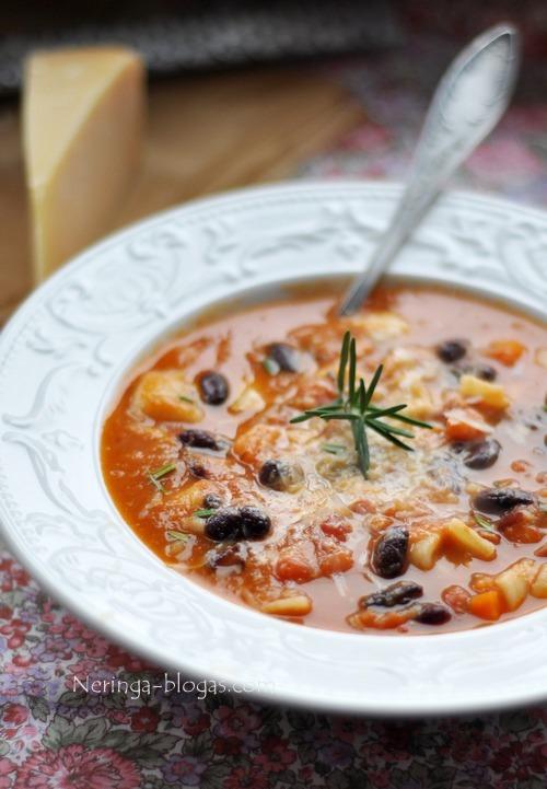 tirsta ir soti darzoviu sriuba su sonine