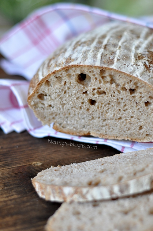 duonele su raugu