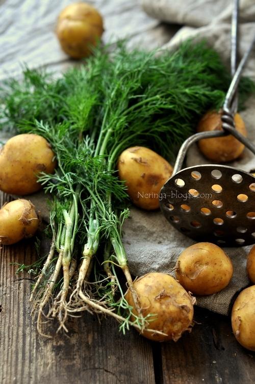 bulves su krapais